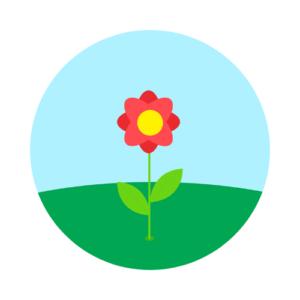 Blossom 毎日レッスンプラン 7500 ポイント