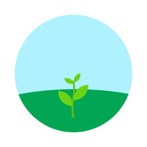 Sprout Plan スプラウトプラン 2500 ポイント